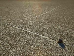 piedra que camina